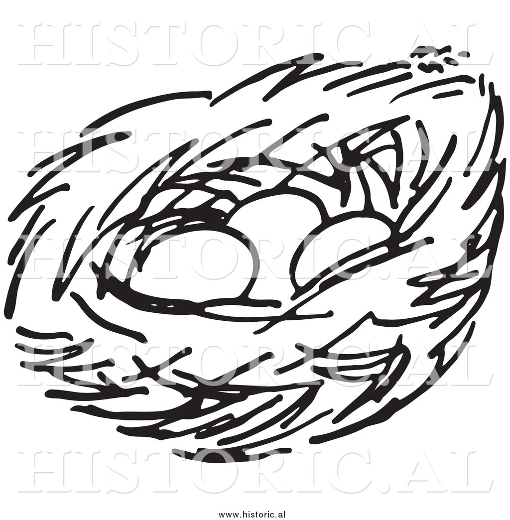 clipart of a bird nest with three eggs black and white line art