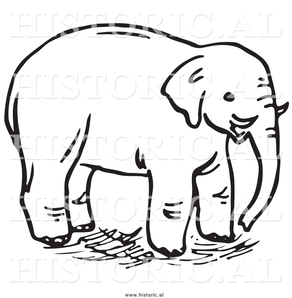Line Drawings Of Endangered Animals : Clipart of an elephant with tusks black and white line