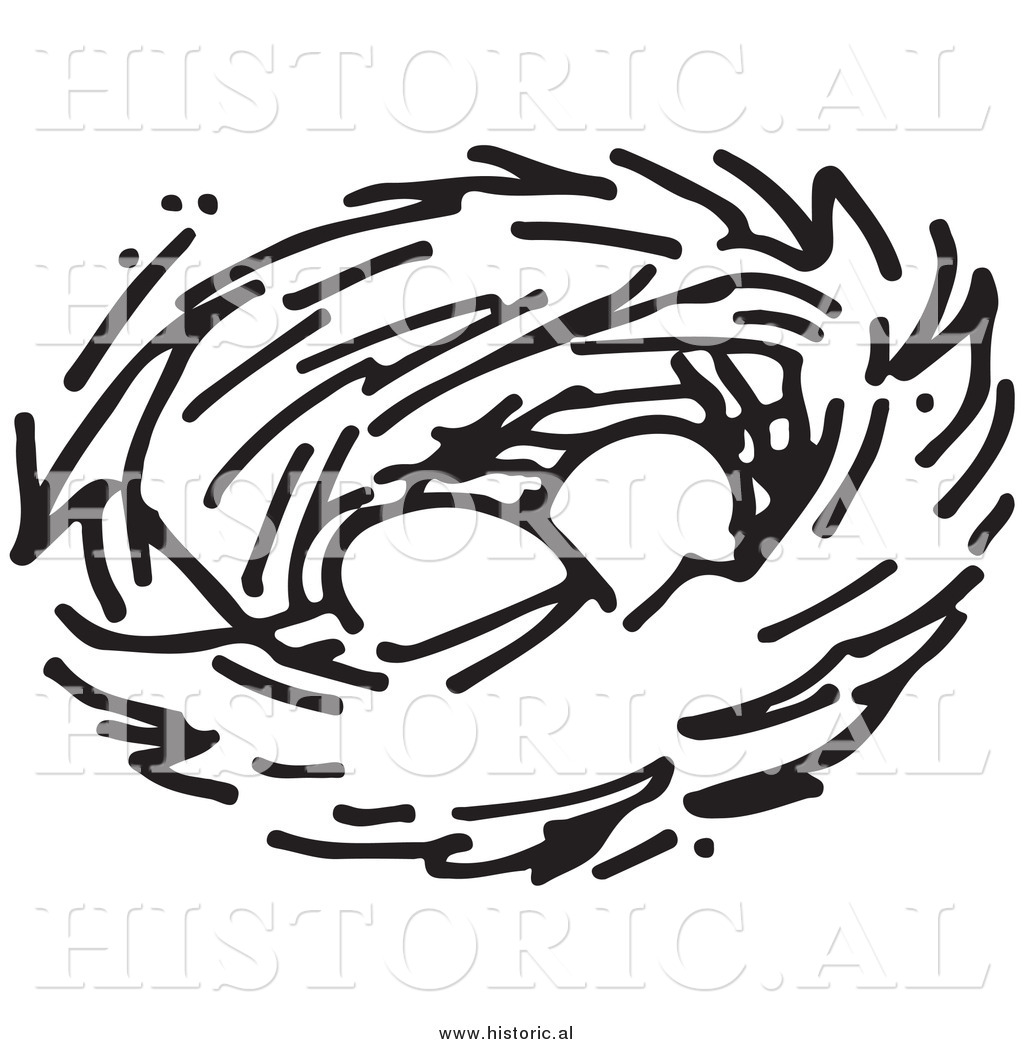 clipart of two eggs in a bird nest black and white drawing by