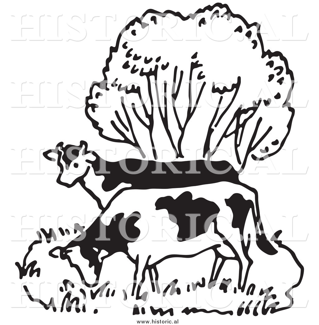 illustration of a couple of cows grazing beside a tree black and