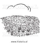 Clipart of a Grass Hillside Field with Cloud in Background - Black and White Line Art by Al
