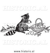 Clipart of a Hungry Raccoon Eating Fruit out of Someone's Basket - Black and White Drawing by Al