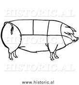 Clipart of a Pig with Outlined Cuts of Pork Chart - Black and White Line Drawing by Al