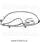 Clipart of a Trussed Goose Ready for Roasting - Black and White Line Drawing by Al