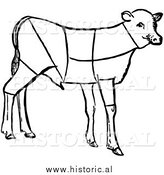 Clipart of Lamb Showing Cuts of Veal by Al