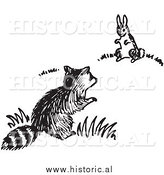 Historical Clipart of a Raccoon and Rabbit Looking at Each Other - Black and White by Al