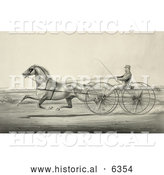Historical Illustration of a Harness Racer Driving a Trotting Horse by Al