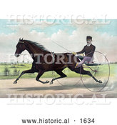 Historical Illustration of a Horse, Champion Pacer Johnston, by Bashaw Golddust, Raced by Peter V. Johnston by Al