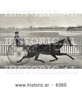 Historical Illustration of a Man Racing the Famous Roan Horse, Captain Mcgowan, in His 20th Mile by Al