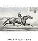 Historical Illustration of a Man Riding a Horse, Billy Boyce, Racing past Judges in Buffalo, New York, August 1st 1868 by Al