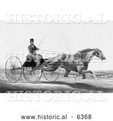 Historical Illustration of a Man, Robert Bonner, in a Cart, Being Pulled by a Running Horse - Black and White by Al