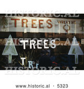 Historical Illustration of a Window Display with Christmas Trees, Plants and Wreaths by Al