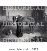 Historical Illustration of a Woman Feeding and Leaning Against a Horse While a Dog Watches and a Kitten Plays, a Man Standing in the Background - Black and White by Al