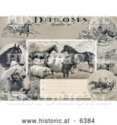 Historical Illustration of an Agricultural Diploma with Jockeys Racing Horses, Livestock, Produce and Farming Tools by Al