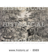 Historical Illustration of Animals Gathered on a River Prior to Boarding Noahs Ark by Al