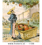 Historical Illustration of Uncle Sam Waiting for Apples to Fall from a Tree in to His Big Basket - Patient Waiters Are No Losers 1897 by Al