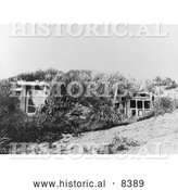 Historical Image of Aleut Barbaras - Black and White Version by Al
