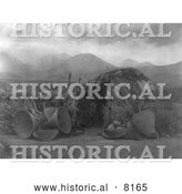 Historical Image of Mono Native American Indian Dwelling 1924 - Black and White by Al