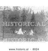 Historical Image of Native American Tipis 1910 - Black and White by Al