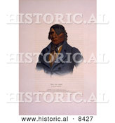 Historical Image of Sioux Indian Chief, Waa-Pa-Shaw 1836 by Al