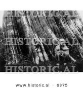 Historical Photo of a Sasquatch Indian Man Sitting Beside a Huge Tree - Black and White Version by Al