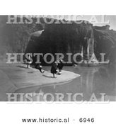 Historical Photo of Acoma Indians Gathering Water - Black and White Version by Al