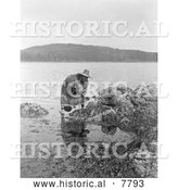 Historical Photo of Gathering Abalones 1910 - Black and White by Al