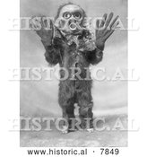 Historical Photo of Hami 1914 - Black and White by Al