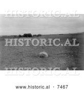 Historical Photo of Hidatsa Indian Mythic Stone - Black and White by Al