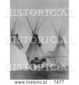 Historical Photo of Horse near Three Tipis, Crow Agency, Montana 1905 - Black and White by Al