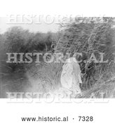 December 13th, 2013: Historical Photo of Mandan Indian Woman Cutting Rushes 1908 - Black and White by Al