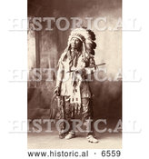 Historical Photo of Native American Named Chief American Horse, Oglala Sioux Indian, in Full Regalia and Feathered Headdress - Sepia by Al