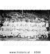 Historical Photo of the 1916 Red Sox Baseball Team Posing in Their Uniforms - Black and White Version by Al