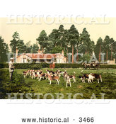 Historical Photochrom of a Man Surrounded by Hounds by Al