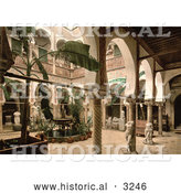 Historical Photochrom of a Museum Entrance Hall with Banana Trees, Fountains and Statues, Algeria by Al