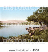 Historical Photochrom of a Rocky Shore on Rydal Water Lake District Cumbria England UK by Al