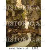 Historical Photochrom of a Wood Path Through a Gorge, Switzerland by Al