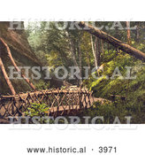 Historical Photochrom of a Wooden Bridge and Path in Shanklin Isle of Wight England UK by Al