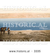 Historical Photochrom of an Arabian Man and Horse near the Dead Sea by Al