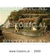 Historical Photochrom of an Ivy Covered Cottage in England by Al