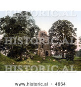 Historical Photochrom of Cattle Grazing in Front of the Ruins of Kirkoswald Castle, Kirkoswald, Cumbria, England by Al