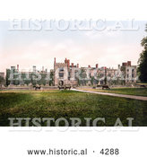 Historical Photochrom of Cows Grazing at Penshurst Place in Tunbridge Wells, England by Al