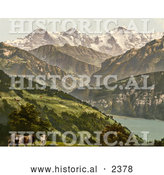 Historical Photochrom of Cows near Lake Thun, Switzerland by Al