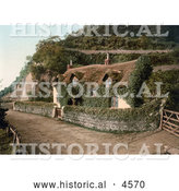 Historical Photochrom of Cute Ivy Covered Swiss Cottage in Lee, Devon, England by Al