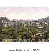 Historical Photochrom of Grapevine Winery Hills in San Paolo, St. Paul's, Eppan, Tyrol, Austria by Al