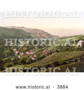 Historical Photochrom of Hillside Homes in Lee Devon England by Al