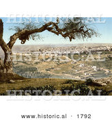 Historical Photochrom of Jerusalem from Mount Scopus by Al