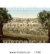 Historical Photochrom of Jerusalem from the Mount of Olives by Al
