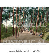 Historical Photochrom of People Sitting on Benches and Strolling down the Tree Lined Invalids' Walk in Bournemouth Dorset England UK by Al