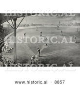 Historical Sepia Illustration of Fans Watching a Boston Braves Baseball Game Fans Watching a Boston Braves Baseball Game 1888 by Al